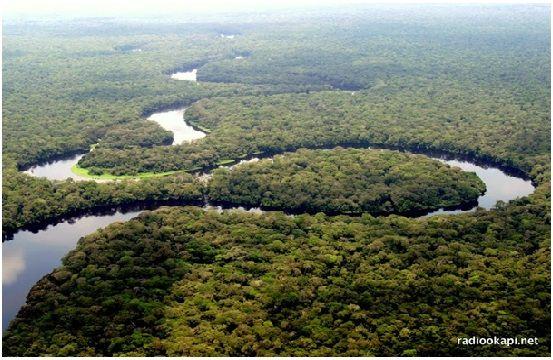 20160908  Les forêts congolaises contribuent à la survie de la planète