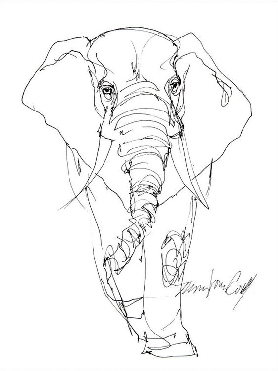 Contour Line Drawing Elephant : Elephant line drawing greeting card from reproduction of
