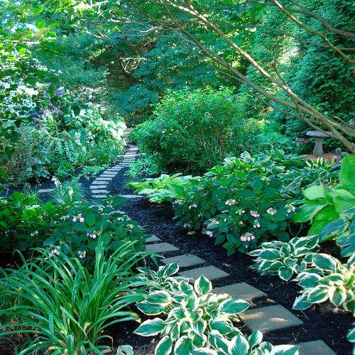 Foliage First Finegardening Garden Landscape Design Shade Garden Landscape Design