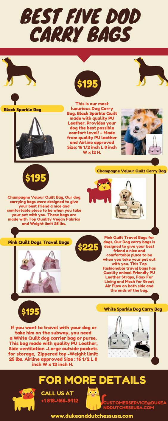 Best Five Dog Carry Bags