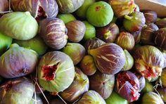 Küche und Kultur Apuliens kennenlernen | Wochenmärkte durchstöbern, beim Bauern kaufen, Städte besichtigen und KOCHEN | Koch- und Kulturwoche Apulien #italien #apulien #kochkurs #feigen #kochen #vamosreisen