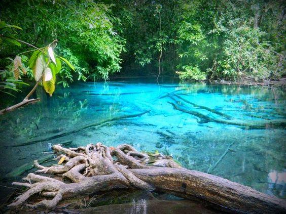 emerald pool, krabi, Thailand