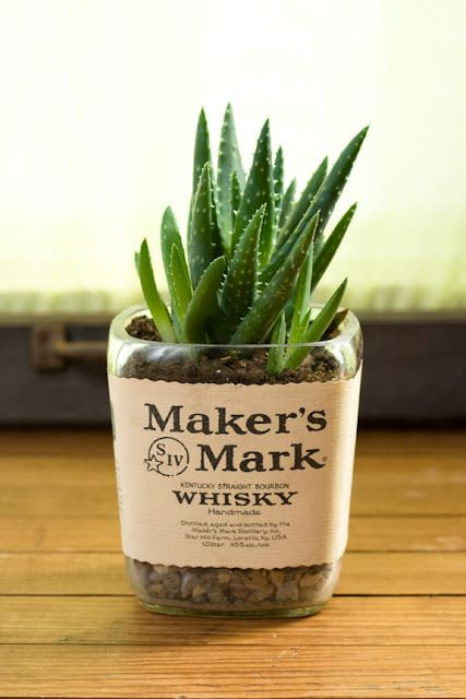 recycled liquor bottle cactus. reuse first makes great handmade soy candles too.