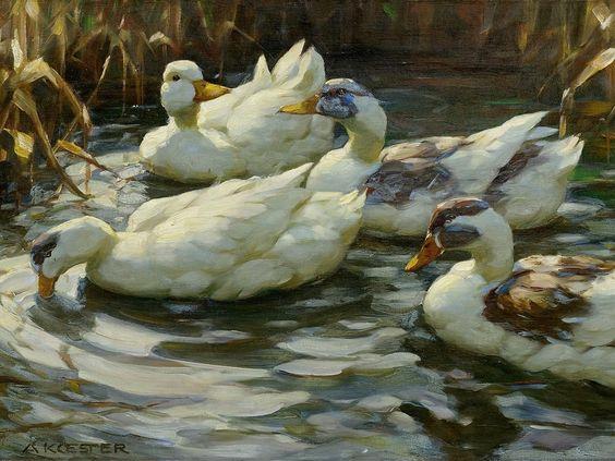 'Ducks in a Pond' - Alexander Koester (1864-1932)