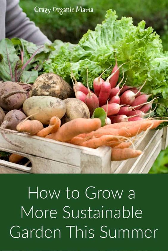 Sustainable gardening practices, from mulching to companion planting to permaculture practices, make a gardener's life easier. Click for some simple tips for making it happen in your own home garden. #organicgardening #organicgardeningtips