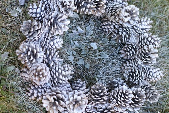 do it yourself divas: DIY: Pinecone Wreath (Practically FREE) buy glossy white spray paint for individual pine cones