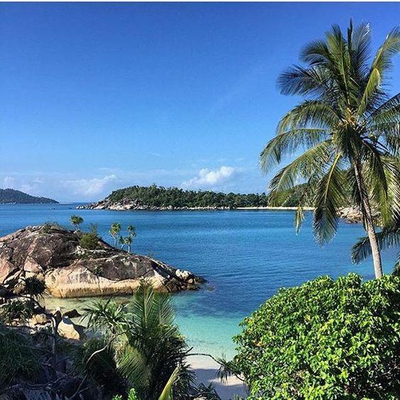 bedarra island australia near @missionbeachtourism  #exploreTNQ with @justinnicholasphotography