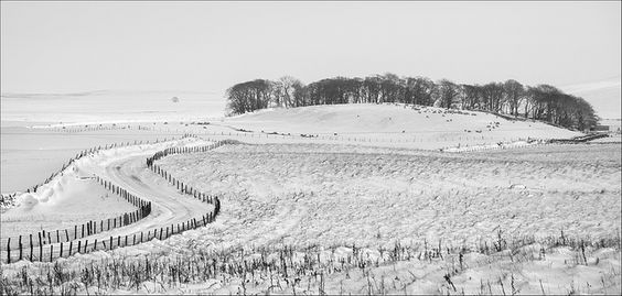 Dalescape by bingleyman2, via Flickr