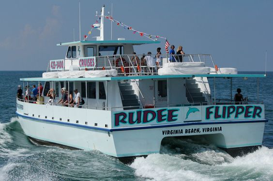 The Rudee Flipper offers Dolphin, Whale, and sight-seeing tours.  Climate controlled cabin, two observation decks, snack bar, and even has beer, wine, and cocktails!