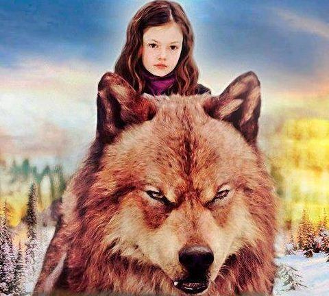 tumblr_me5dwfEuBs1rk64dwo1_500 - TwiFans-Twilight Saga books and Movie Fansite