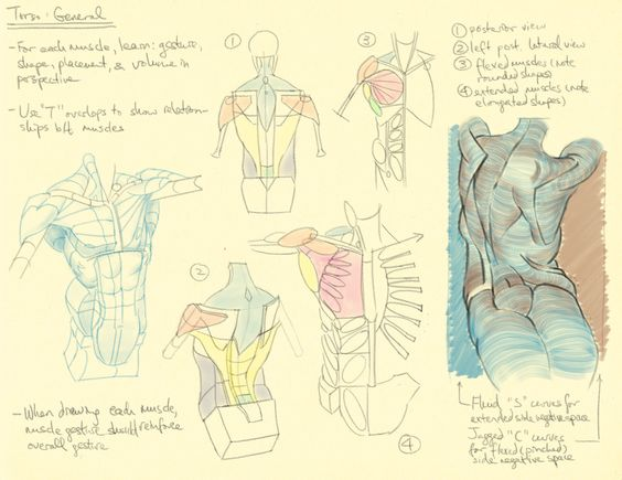 Character Design References Challenge Rules : The characters pose reference and o jays on pinterest