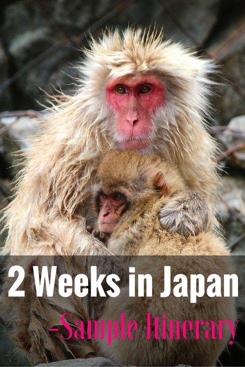 2 Weeks in Japan: Sample Itinerary - FreeYourMindTravel