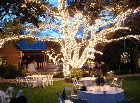 Un arbol con luces jardin afuera para noche bodas para for Boda en un jardin