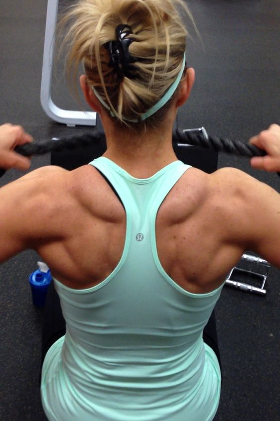 Back And Rear Delts Workout Becoming Athletic Exercise