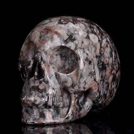 1.65'' Natural Crinoid Fossil Carved Human Skull Carving
