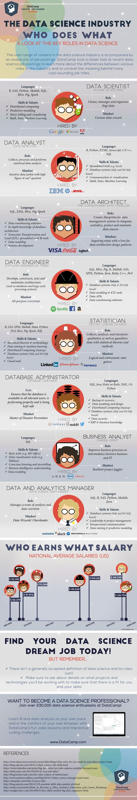 Data Science Industry Unravelled: Data science roles, skills, mindset, salaries,.. all in one infographic!