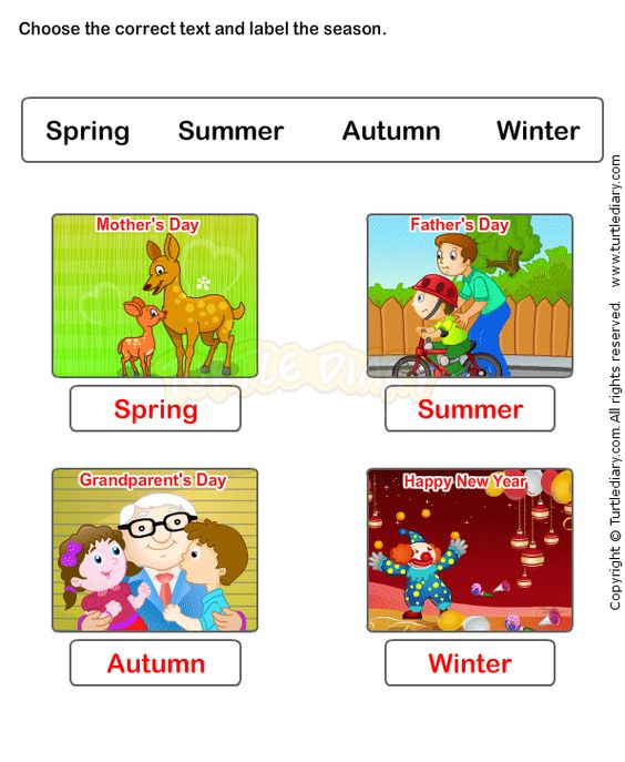 Seasons Worksheet Kindergarten – Seasons Worksheets for Kindergarten