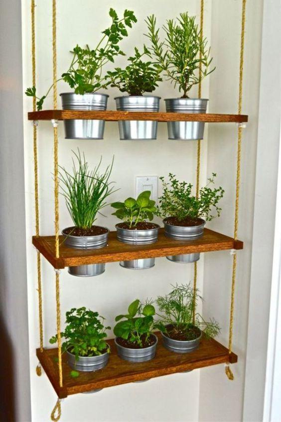 hanging indoor garden shelves #gardenIdeas #garden #gardening #plants #homeDecor #indoor #verticalGarden