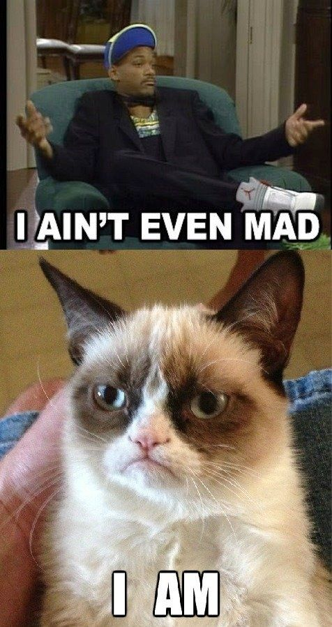 grumpy cat, Will Smith / Fresh Prince of Bel-Air, I ain't even mad. I am.:
