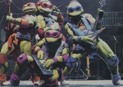 Rock'n turtles