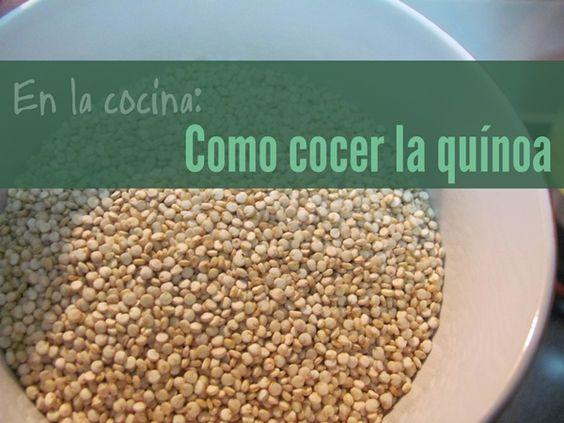 El cultivo de la quinoa data de hace al menos 5.000 años y su uso se extendía entre los pueblos que vivían en las cercanías de la Cordillera de Los Andes. Su excelente contenido nutricional lo hací…
