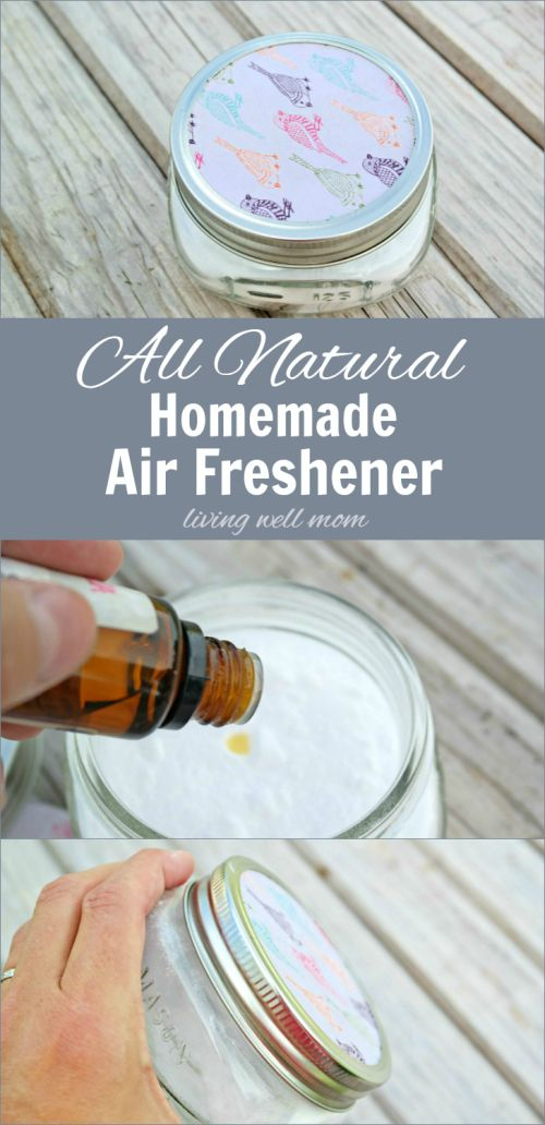 Need to get rid of unpleasant odors try this all natural - Living room air fresheners ...