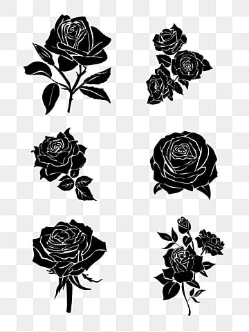 Black Roses Decorated Cartoon Rose Vector Rose Grey Rose Png Transparent Clipart Image And Psd File For Free Download Cartoon Rose Grey Roses Black Rose