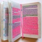 Cómo Estudiar Derecho: 4 Técnicas de Memorización