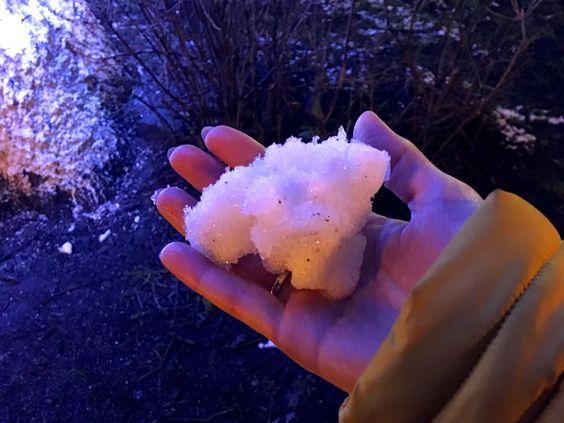 Немного снега в Новый год на Балтийском море. Фото: Evgenia Shveda