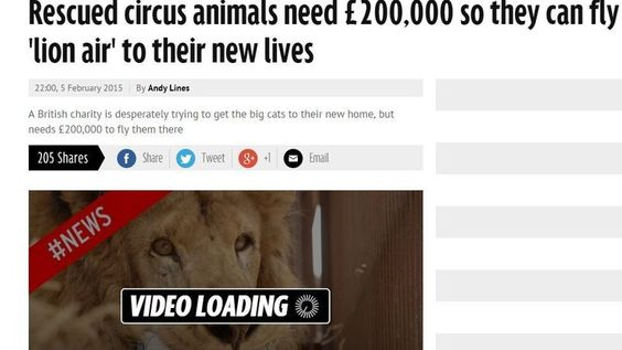 Petition · Refuse to allow 21 Lions to be shipped into the United States · Change.org