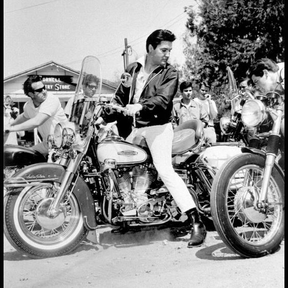 Mikes Famous Harley Davidson Motorcycles
