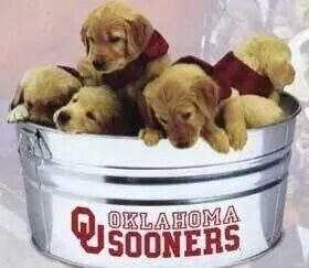 There is nothing cuter!!!!!#BOOMER SOONER.      via: Sooner Faithful