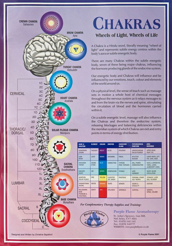 An A3 poster that details the 7 Chakras of the body with information about: Name Location Colour Emotion Endocrine gland Psychological Function Area Governed:
