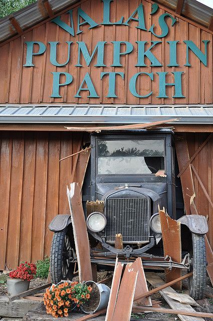 Busting Through The Barn At Vala's Pumpkin Patch