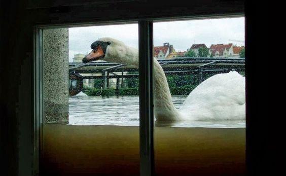 Απίστευτες φωτογραφίες που δείχνουν την δύναμη της φύση ενάντια στον άνθρωπο
