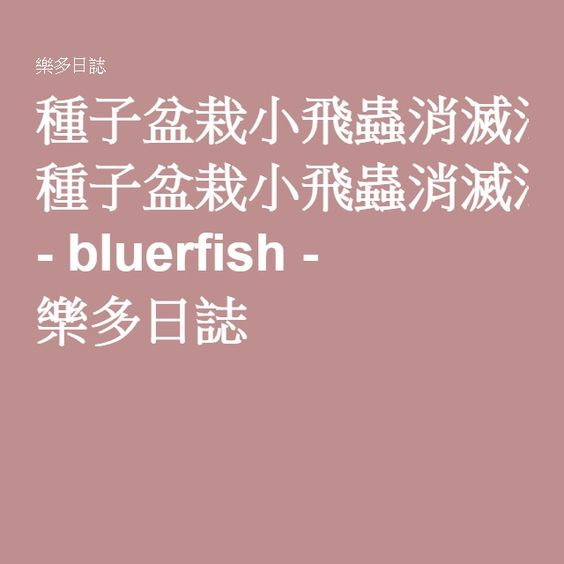 種子盆栽小飛蟲消滅法 - bluerfish - 樂多日誌