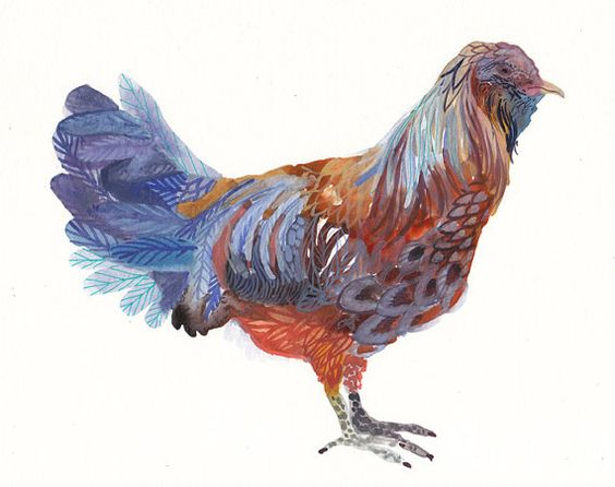 Americana Chicken  Archival Print by unitedthread on Etsy