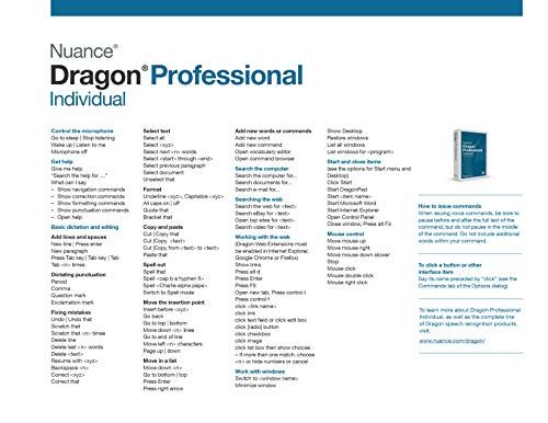 Dragon Professional Individual 15