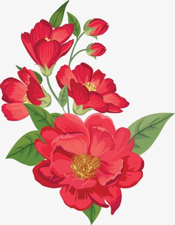 Ghim Của Ellen Bounds Tren A Look At Poppies Hoa Ram Bụt Mỹ Thuật Nghệ Thuật