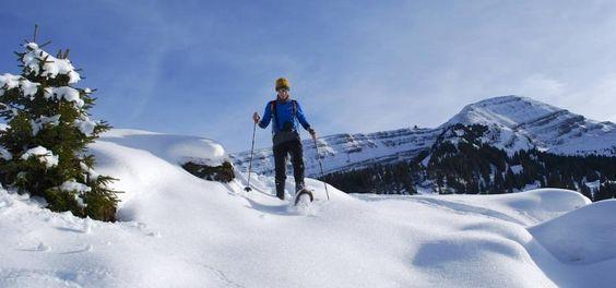 Kleine Fluchten in die Sonne: Alp Sellamatt