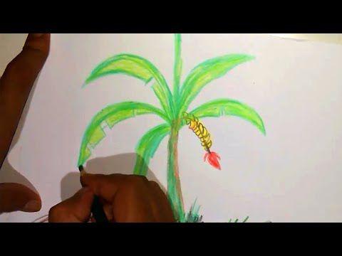 Cara Gambar Pohon Pisang Dengan Pinsil Warna Youtube Menggambar Pohon Gambar Cara Menggambar