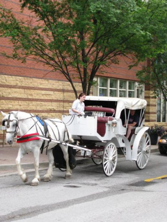 10 Romantic Things to Do in Louisville: Take a Horse-Drawn Carriage Ride