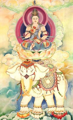 Samantabhadra Bodhisattva, also known as the Universally Worthy Bodhisattva, is one of the Three Venerables of Shakyamuni. This bodhisattva is always on the right of Shakyamuni Buddha, representing the guardian of the Law, the lord of the Law and the practice of all Buddhas.