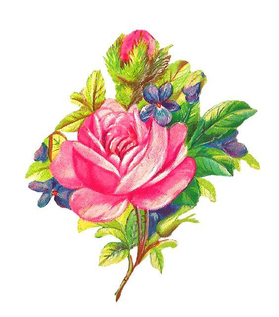 digital rose download: