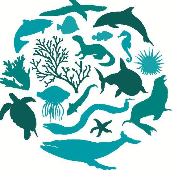22 de Mayo – Día Internacional de la Diversidad Biológica http://www.encuentos.com/efemerides/22-de-mayo-dia-internacional-de-la-diversidad-biologica-3/