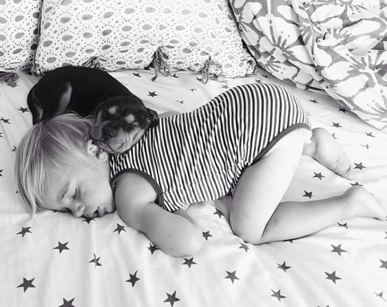 : Nap Time, Puppy Napping, Cuteness Overload, Best Friends, Baby, Jessica Shyba, Naptime, Bestfriend