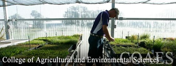 Environmental and Wildlife Management subject college