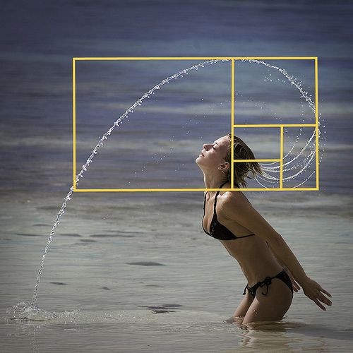 Serie Fibonacci. Maravillosa representación gráfica.: