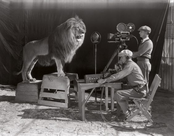 03-Rare-History-Photos-Lion-MCM-Growl1