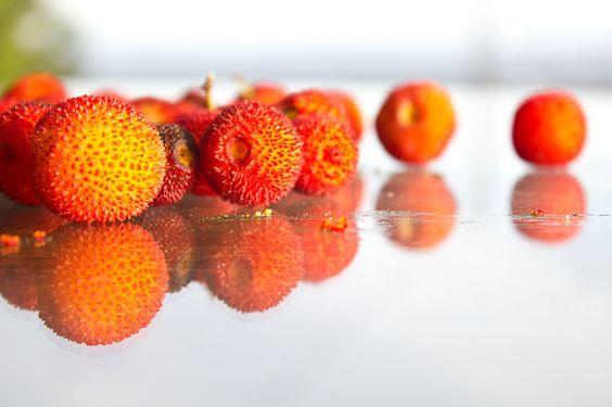Vegan Mofo Day 3 – Strawberry Tree Fruit Jam   Arbocer-Marmelade